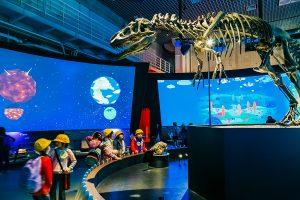intelligens múzeumi tárlatok
